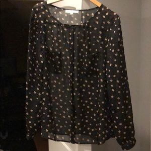 Ann Taylor Sheer button down blouse